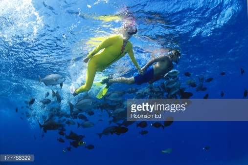 177788329-hawaii-maui-molokini-couple-hold-hands-at-gettyimages.jpg