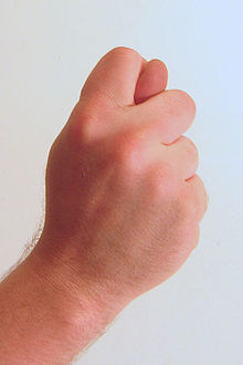 220px-Gesture_fist_with_thumb_through_fingers.jpg