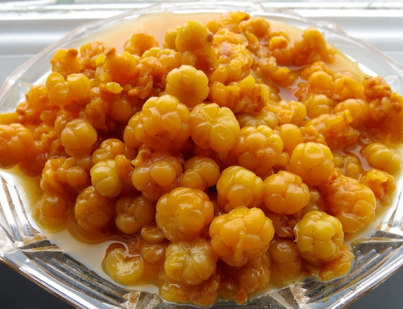 3-Cloudberry-or-Bakeapple.jpg