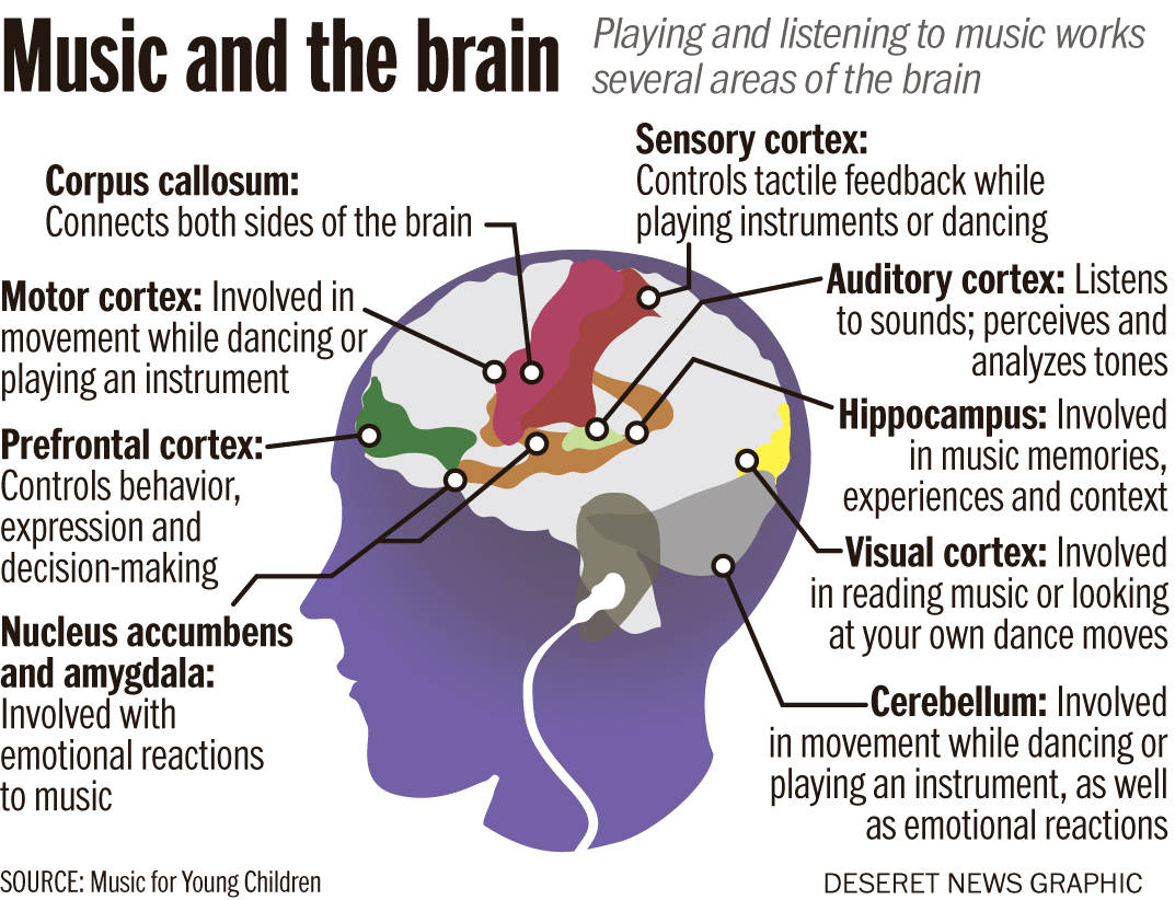 Brain-on-music.jpg