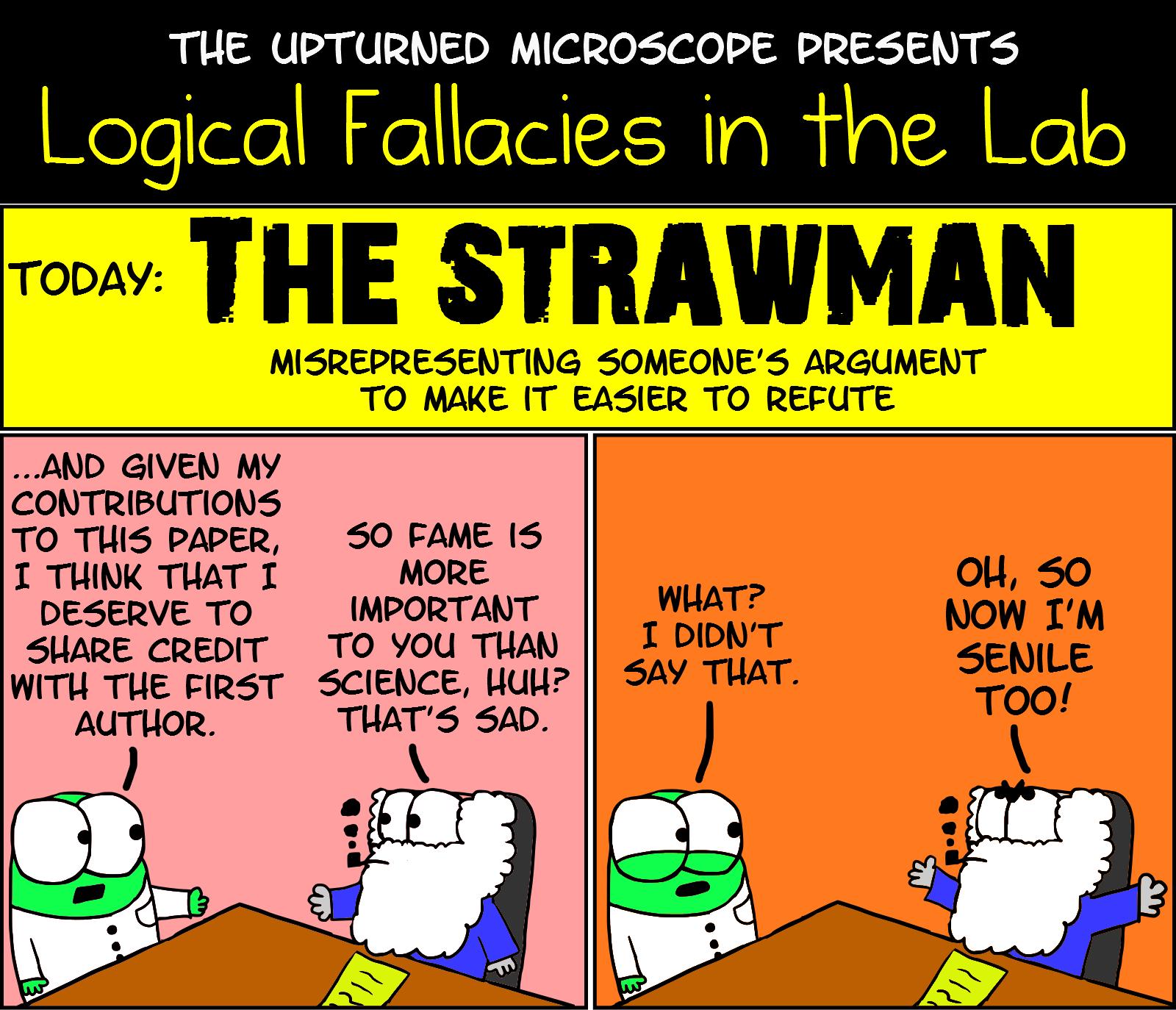 lf1-strawman.png