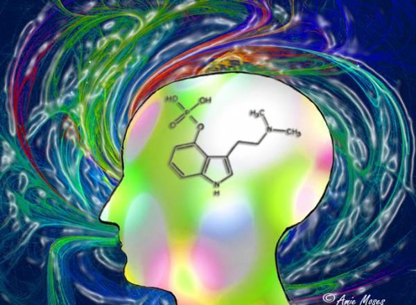 psilocybin-mind.jpg