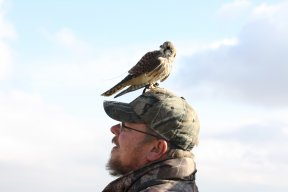 Warren Spencer