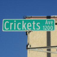 CricketsGalore