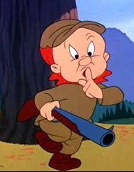 Elmer B Fuddled